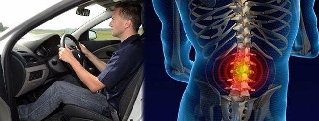 Как выбрать ортопедические чехлы на автомобильные сидения