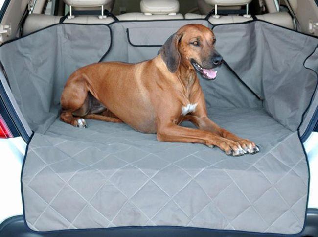Разновидности чехлов для перевозки собак в автомобиле